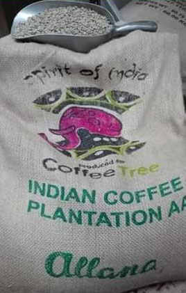 caffe-arabica-india-plantation-aa
